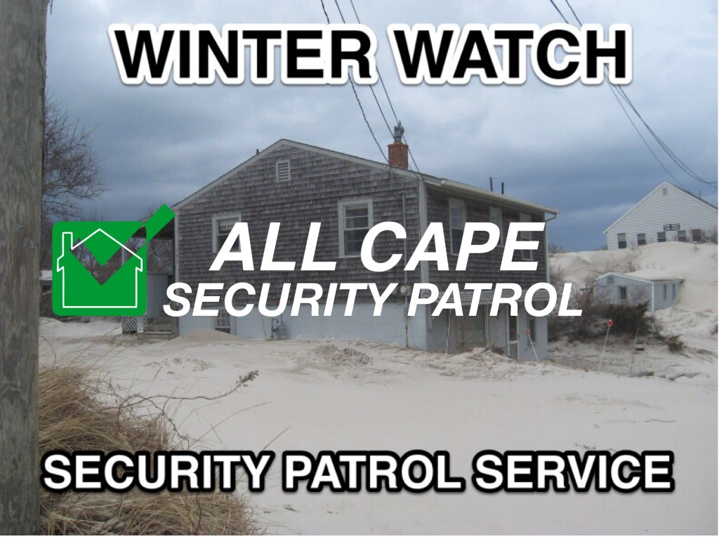 Cape Cod winter watch
